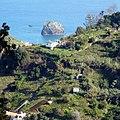 Levada Wanderungen, Madeira - 2013-01-10 - 85900229.jpg