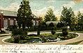 Lily Pond, Shaw's Garden (NBY 433801).jpg