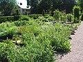 Linnéträdgården.jpg