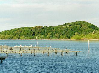 Brunswick River (New South Wales) - Image: Littoral rainforest Brunswick Heads July 17 2000