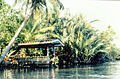 Living on the canal, Bangkok 1982-4.jpg