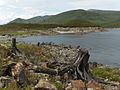 Loch Mullardoch - geograph.org.uk - 212861.jpg