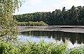 Loch Oire - geograph.org.uk - 877443.jpg