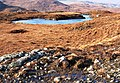Lochan and bog, Isle of Lewis - geograph.org.uk - 135815.jpg
