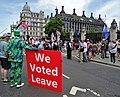 London July 24 2019 (48) Brexit Protest Westminster (48366849657).jpg