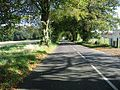 Looking NE along Sholden New Road - geograph.org.uk - 585454.jpg