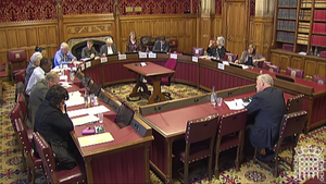 Parliamentary Committees of the United Kingdom - Lords select committee circa 2013