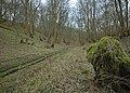 Low Hunsley Plantation - eastern end - geograph.org.uk - 702098.jpg