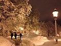 Lumine Pirogovi park.JPG