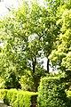 MADRID A.V.U. JARDIN BOTANICO VISTAS - panoramio (3).jpg