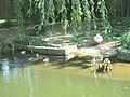 Maksimir Zoo2.jpg