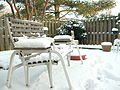 March 2009 snowstorm aftermath in northern Virginia.jpg
