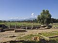 Mariana Roman ruins.jpg