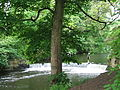 Marple River Goyt 0282.JPG
