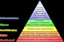 هذه النظرية تختلف عن نظرية ماسلو في أنها تقول بأن الاحتياجات لا تتبع  هَرَماً مثل ما قال ماسلو بل قد يحاول الإنسان تلبية أكثر من نوع من  الاحتياجات في آن واحد ...