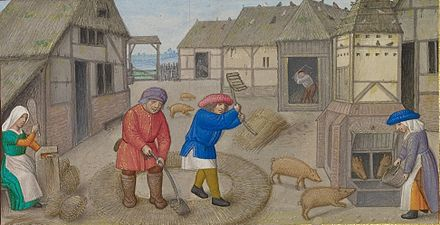Threshing and pig feeding from a book of hours from the Workshop of the Master of James IV of Scotland (Flemish, c. 1541)