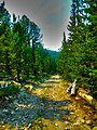"""May -conservationlands15 Social Media Takeover- Add the Continental Divide Trail - the """"King of Trails"""" - to Your Bucket List (17698777042).jpg"""