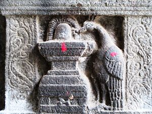 Mayuranathaswami Temple, Mayiladuthurai - Hindu goddess Parvathi in the form of a peahen worshipping a shivalinga