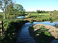 Meander on River Axe - geograph.org.uk - 440544.jpg