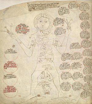Medical astrology - A 1410 illustration of Zodiac Man (homo signorum) showing the anciently held link between the 12 signs of the Zodiac and the various parts of the body