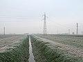 Mezzogiorno - Sant'Agata Bolognese (BO) Italia - 16 Dicembre 2010 - panoramio.jpg