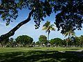 Miami, FL Morningside Park.jpg