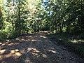 Midway Road Enid Lake Mississippi.jpg