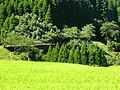 Minamata Okawa02.JPG