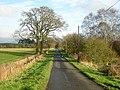 Minor Road Near Lochrigghead - geograph.org.uk - 287606.jpg