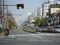Miyakojima-Dori - panoramio.jpg