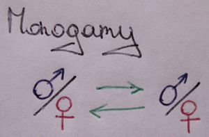 English: A schematic showing the monogamy rela...
