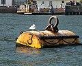 Mooring buoy, Dartmouth - geograph.org.uk - 1515184.jpg