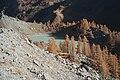 Moraine et lac du Miage.jpg