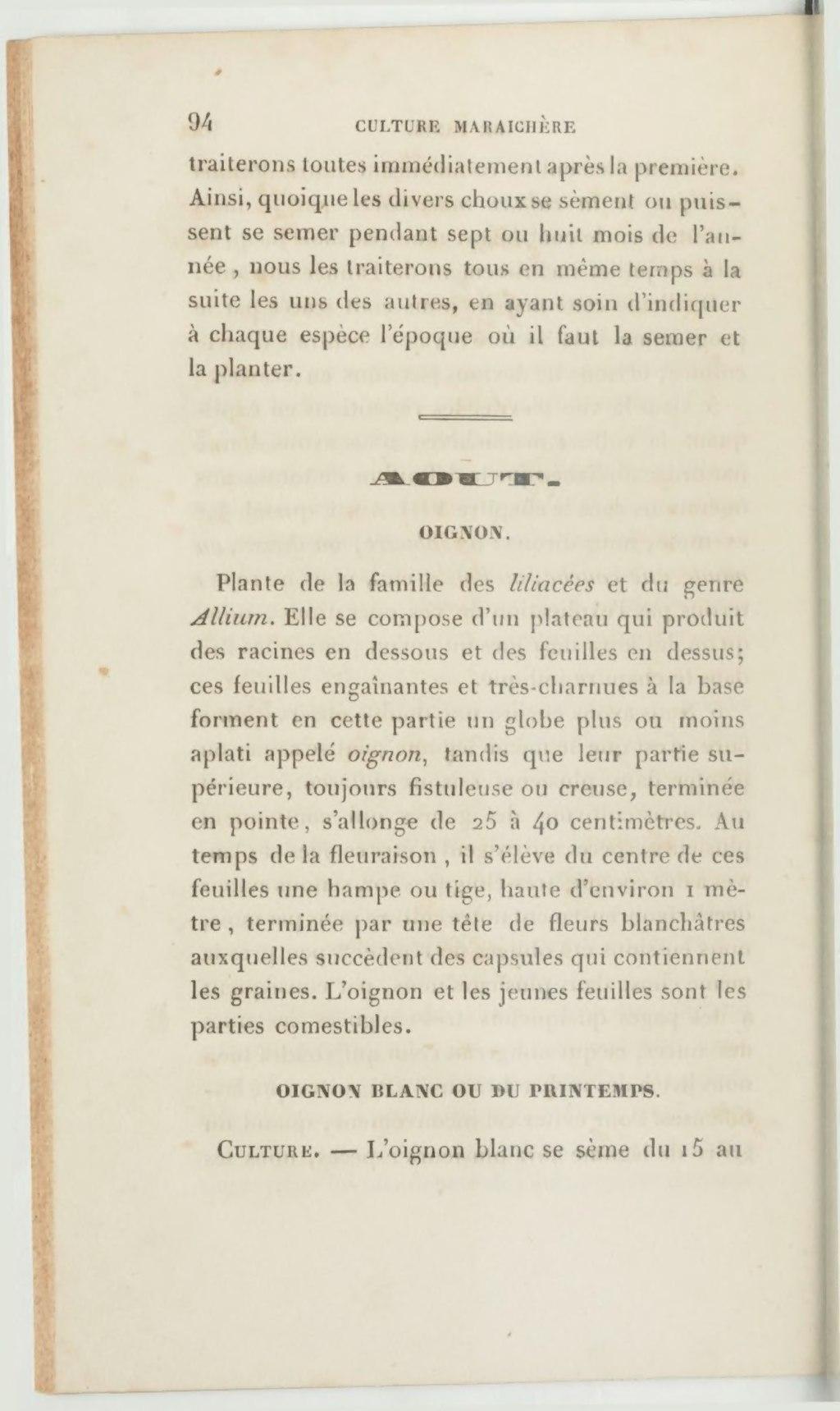 Oignon Blanc A Planter page:moreau, daverne - manuel pratique de la culture