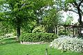 Mount Airy Arboretum - DSC03863.JPG