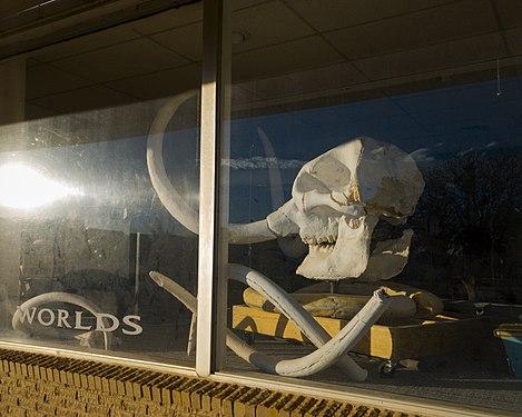 Mt. Blanco Fossil Museum in Crosbyton, Texas.jpg