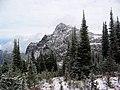 Mt Brown (5635251788).jpg
