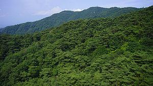 六甲山's relation image