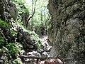 Mudna dol - panoramio (5).jpg