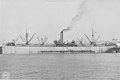 Mule ship Mexican army report.jpg
