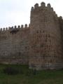 Muralla y cubo. Ávila.TIF
