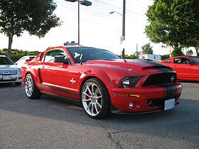Mustang-IMG 2284.JPG
