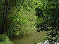 Naherholungsgebiet Nahtebachtal.jpg