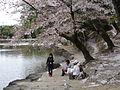 Nara Japan 3.jpg