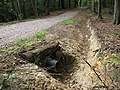 New drainage for a forest track - geograph.org.uk - 1476258.jpg