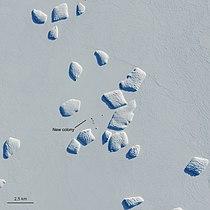 Ninnis Bank, Antarctica ESA22158905.jpeg