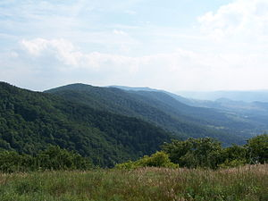 North Fork Mountain - Looking south along North Fork Mountain from Nelson Sods