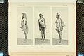 Nova Guinea - Vol 7 - Ethnographie - 1913 - Tafel 41.jpg