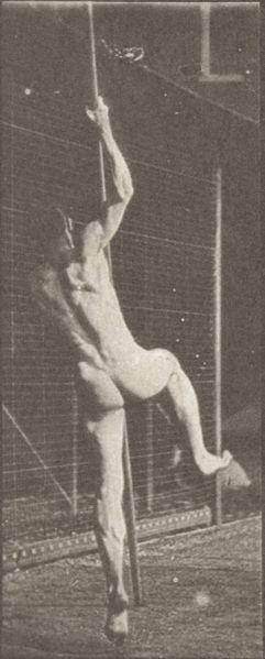 Nude Pole Vaulting 59