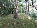Ochiltree Castle, East Ayrshire, Scotland - the motte summit.jpg